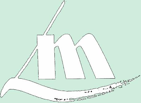 logo Laser Maintenance